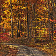 Painted Autumn Country Roads Art Print