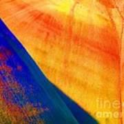 Painted Hills 6 Art Print