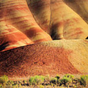Painted Hills And Grassland Art Print