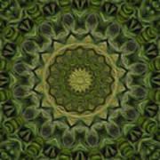 Painted Kaleidoscope 11 Art Print