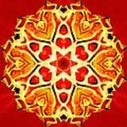 Painted Lotus Xi Art Print
