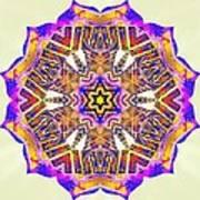 Painted Lotus Xiv Art Print