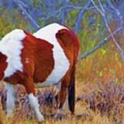 Painted Marsh Mare Art Print