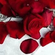 Painted Petals Art Print