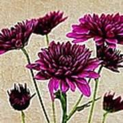Painted Pink Bouquet Art Print