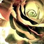 Painted Rose 1 Art Print