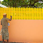 Painting The Fence Art Print
