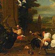 Palace Garden Exotic Birds And Farmyard Fowl Art Print