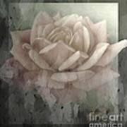 Pale Rose Photoart Art Print by Debbie Portwood