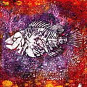 Paleo Fish Art Print