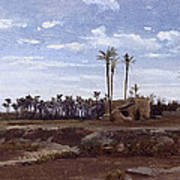 Palm Forest In Elche Art Print