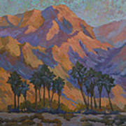 Palm Oasis At La Quinta Cove Art Print