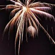 Palm Tree Fireworks Art Print