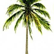 Palm Tree Number 2 Art Print