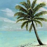 Palm Tree Study Art Print by Cecilia Brendel