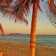 Palm Trees By A Restaurant On The Beach In Bahia Kino-sonora-mexico Art Print