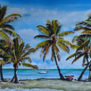 Palm Trees In The Keys Art Print