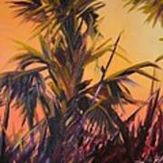 Palmettos At Dusk Art Print