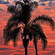Palmtree Apocalypse Art Print
