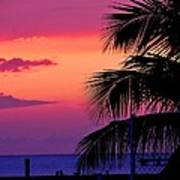 Palmtree At Sunset Art Print