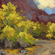 Palo Verde Trees Art Print
