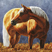 Palomino Horse - Gold Horse Meadow Print by Crista Forest