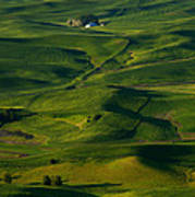 Palouse Green Art Print