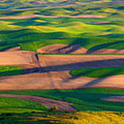 Palouse Ocean Of Wheat Art Print