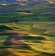 Palouse Shadows Art Print