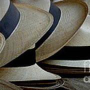 Panama Hats Art Print