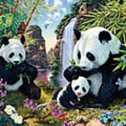 Panda Valley Art Print