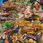 Panjshir Art Print