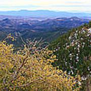 Panorama Emory Pass Vista Nm Art Print