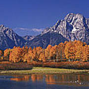 Panorama Fall Morning Oxbow Bend Grand Tetons National Park Wyoming Art Print