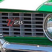 panoramic green Z28 Art Print