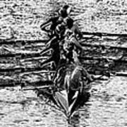 Panoramic Rowing Art Print