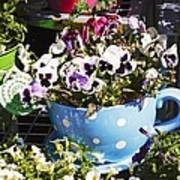 Cup Of Pansies Art Print