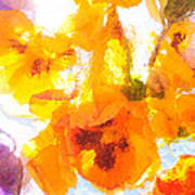 Pansy Flowers Art Print
