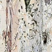 Paper Bark Astract Art Print