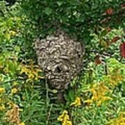 Paper Hornet Nest Art Print