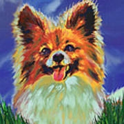 Papillion Puppy Art Print