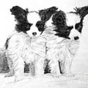 Papillon Puppies Art Print