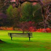 Park Bench Art Print