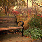 Park Bench In Autumn Art Print