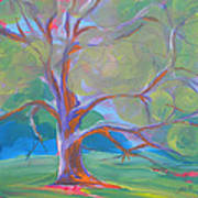 Park Trees 8 Art Print