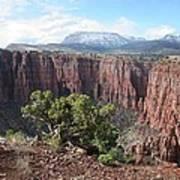 Parker Canyon In The Sierra Ancha Arizona Art Print