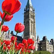 Parliament Hill, Ottawa Art Print