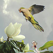 Parrot And Magnolia Tree Art Print