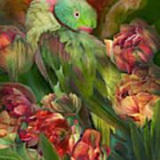 Parrot In Parrot Tulips Art Print