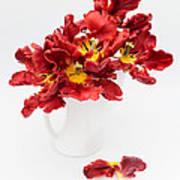 Parrot Tulips In A Milk Jug Art Print